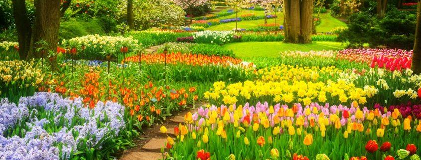 Kertfenntartás Kaposváron: az Ön kertje is lehet zöld oázis!