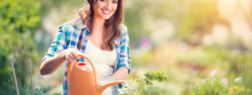 Készüljön velünk a tavaszra, vegye igénybe kertészeti szolgáltatásainkat!